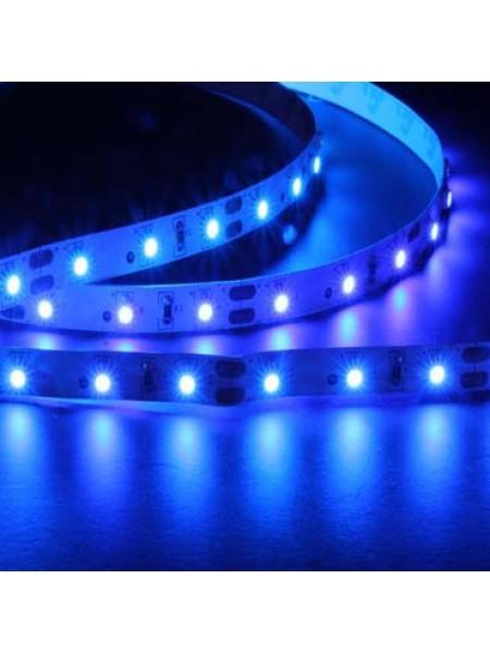 Светодиодная лента LUX ARLIGHT